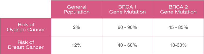 Brca1 2 The Cancer Gene Explained