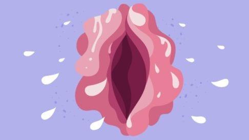 Wet vagina illustration