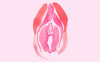 5 preguntas que todas nos hacemos sobre nuestras vaginas