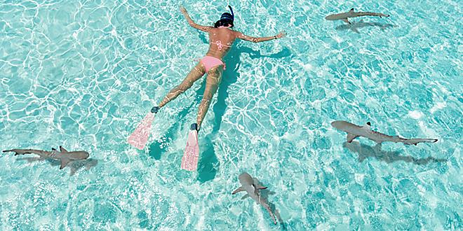 Puedo Ir A Nadar O Bañarme Con La Regla Claro Que Sí